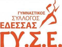 1353918_10201875205780983_1484530917_o_-_gymnastikos_syllogos_edessas.jpg