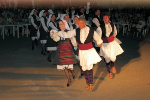 Μορφωτικός Εκπολιτιστικός Σύλλογος Νέων Άρνισσας (ΜΕΣΝΑ)